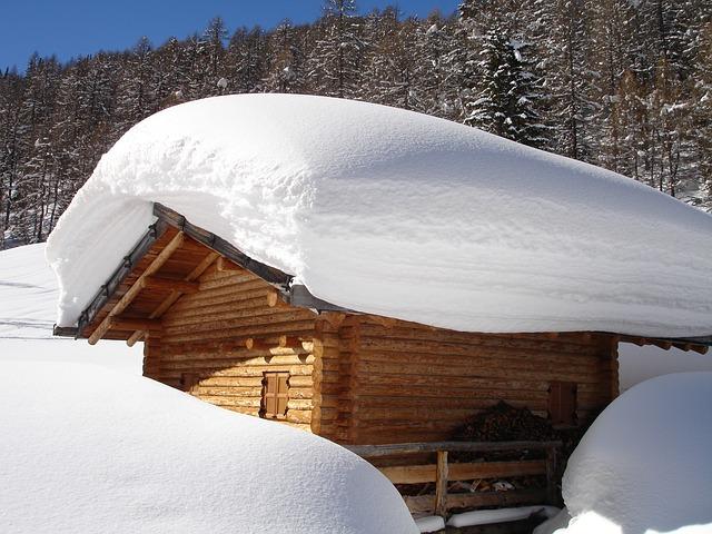 welche arten von schneefr sen gibt es schneeschaufel. Black Bedroom Furniture Sets. Home Design Ideas